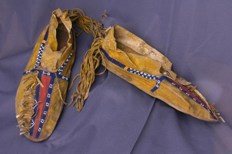 Plains Tribes